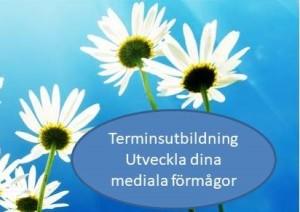 BillablinUtvMedialaFörm
